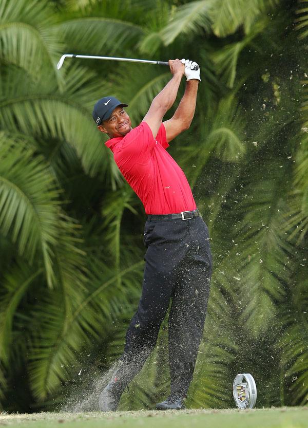 Tiger Woods Golf Championship