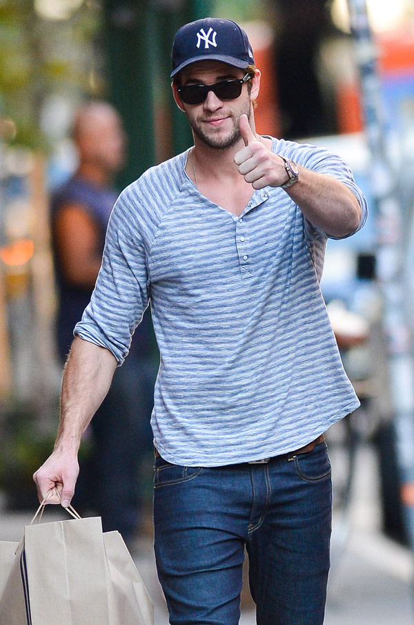 Liam Hemsworth Miley Cyrus Wrecking Ball