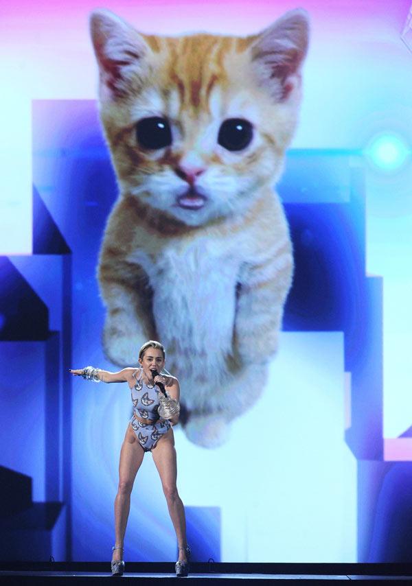Miley Cyrus AMAs Cat