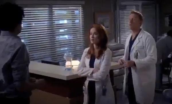 Grey's Anatomy Callie Arizona Fight