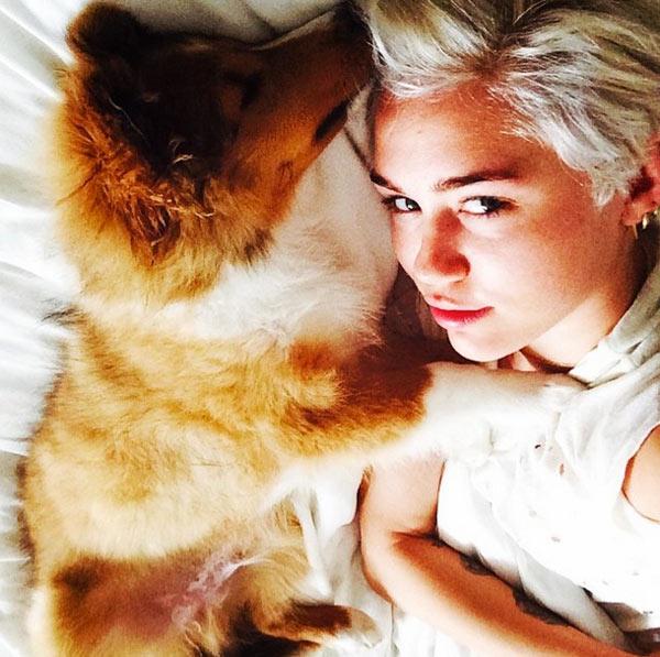 Miley Cyrus New Dog Emu Photo