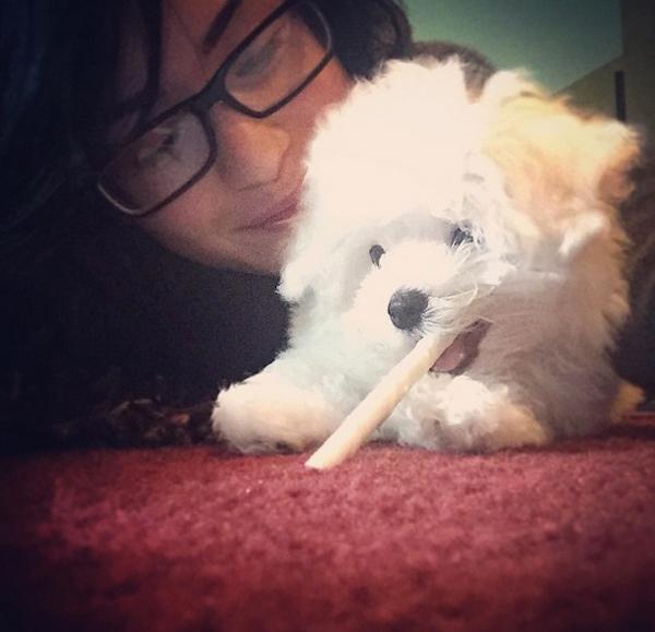 Demi Lovato Debuts New Puppy Buddy