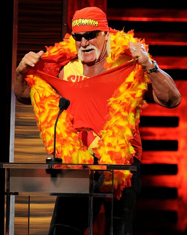 Hulk Hogan Racist