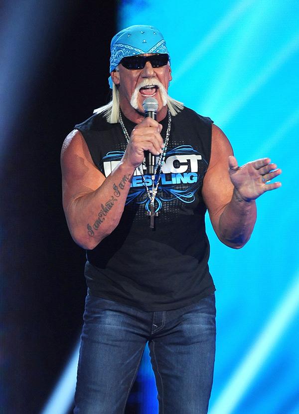 Hulk Hogan Apology
