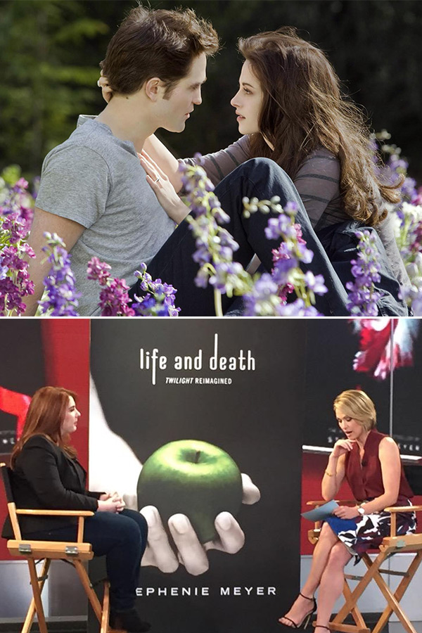 What Is New Twilight Book
