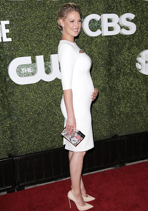 Pregnant Stars Due 2017 Pics