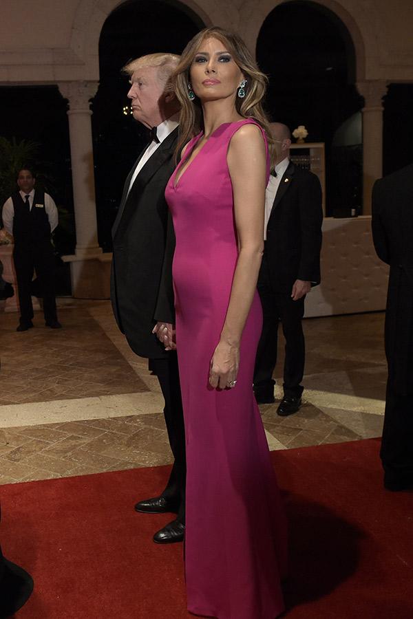 Melania trump hot pics