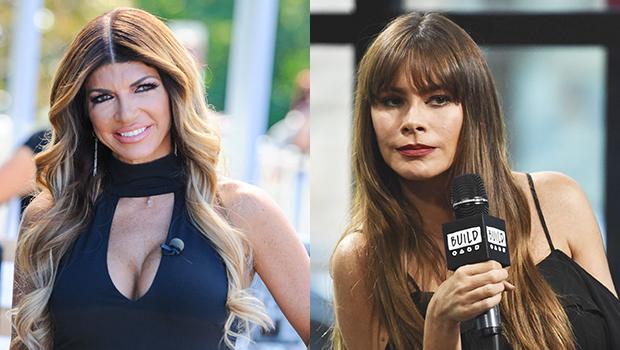 Teresa Giudice & Sofia Vergara