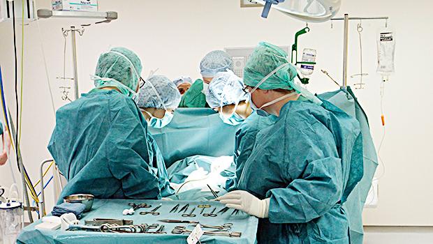 face transplant Katie stubblefield