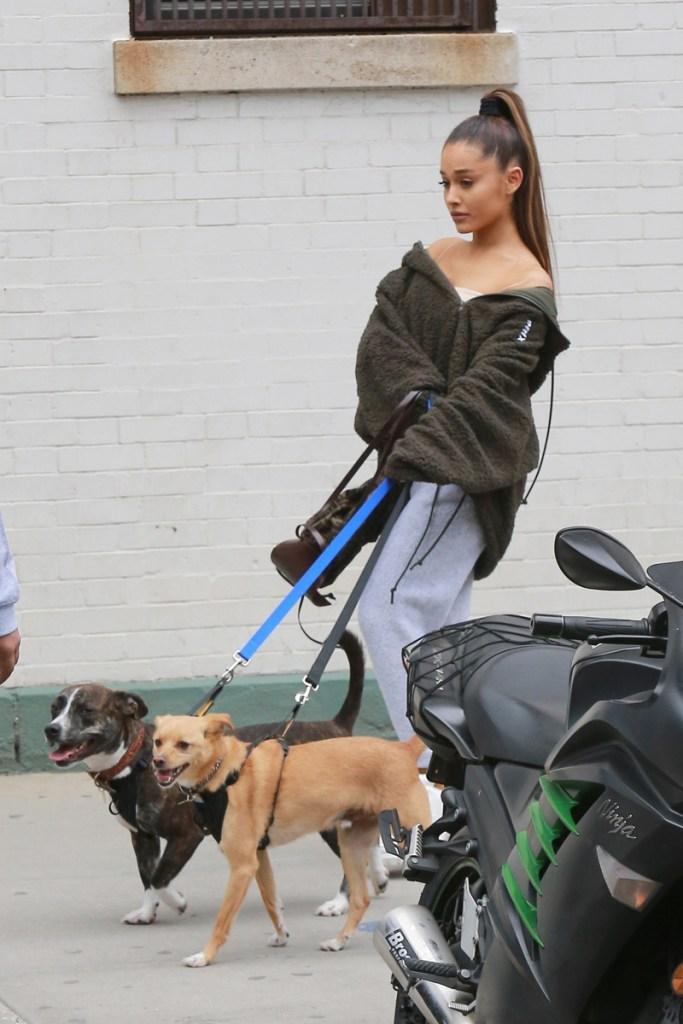 Ariana Grande Walking Myron