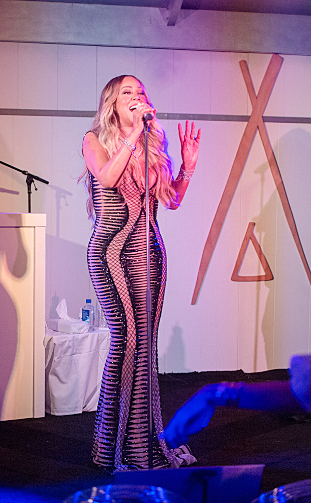Mariah Carey New Year's Dress 2019