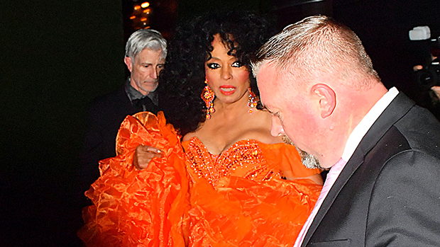 Diana Ross Outfits Birthday Party