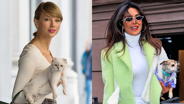 National Pet Day: Taylor Swift, Kylie Jenner & More Show Love To Their Furry Friends In Sweet Pics.jpg