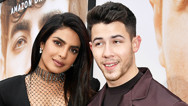 When Will Nick Jonas Priyanka Chopa Have Kids