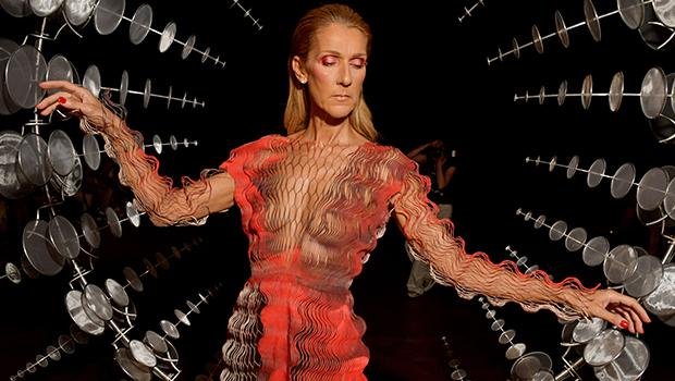 Celine Dion Sheer Dress