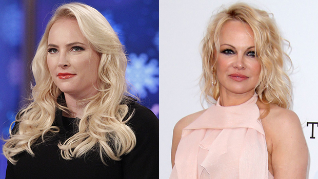 Meghan McCain Pamela Anderson