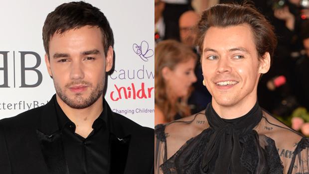Liam Payne, Harry Styles