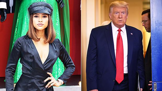 Karrueche Tran Donald Trump