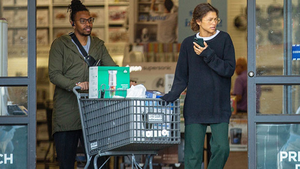 Zendaya grocery shopping with her brother in LA