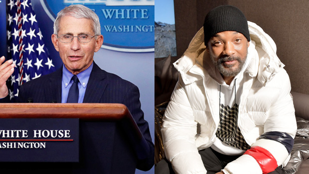 anthony fauci, will smith