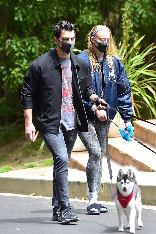 Joe Jonas & Sophie Turner walking their dogs