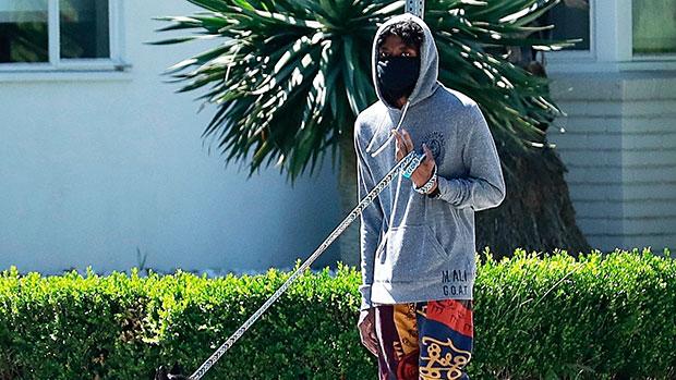 Chadwick Boseman walking his dog