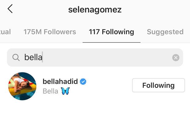 Selena Gomez, Bella Hadid