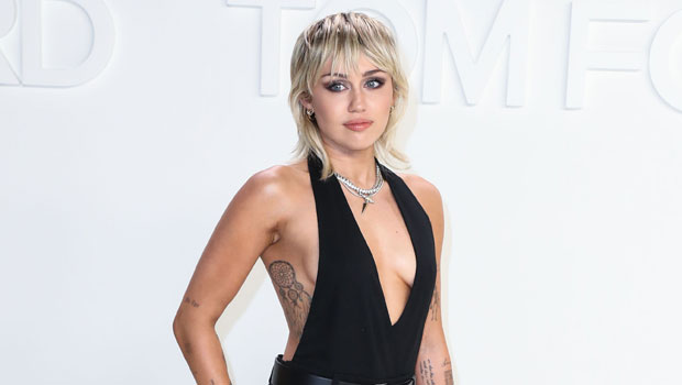 Miley Cyrus Mullet