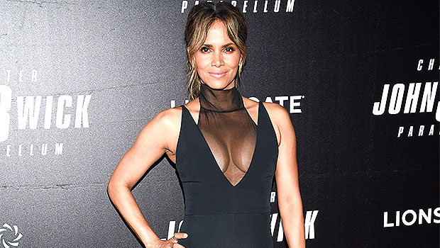 Halle Berry Van Hunt Relationship Update