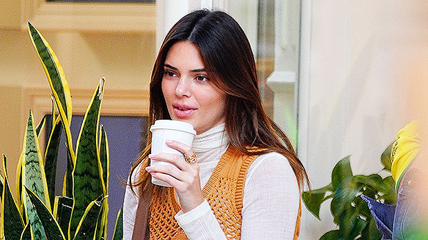 Kendall Jenner Enjoys Her Morning Coffee In A Sexy Robe & K Pair Of Louis Vuitton Slippers — See Pic