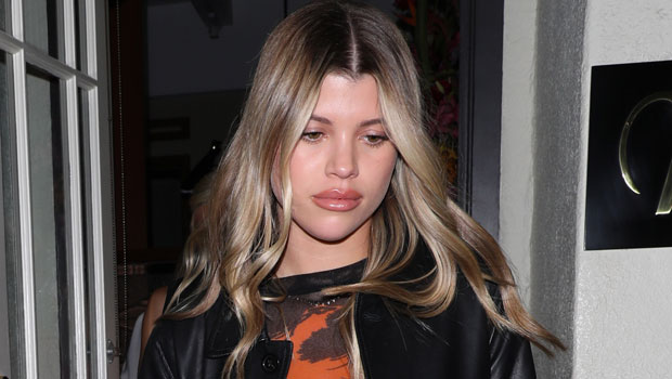 Sofia Richie Slays As Halle Berry S Catwoman With Sexy Leather Costume At Kendall Jenner S Party