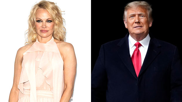 Pamela Anderson Donald Trump