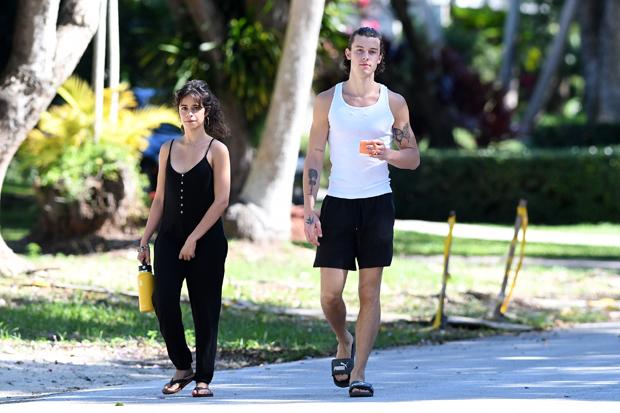 Shawn Mendes & Camila Cabello in Nov. 2020