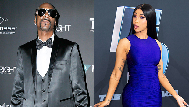 Snoop Dogg Criticizes Cardi B's 'WAP': 'Let's Have Some More Privacy & Imagination'