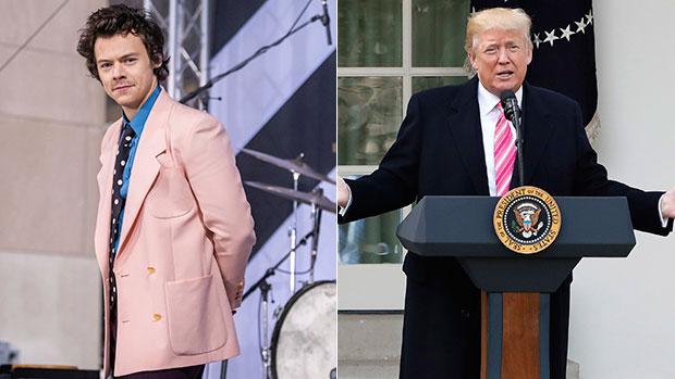 Harry Styles, Donald Trump