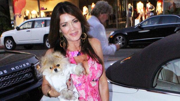 Lisa Vanderpump Gets Love From Andy Cohen & More After Announcing Death Of Beloved Dog Giggy