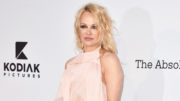 Pamela Anderson Married: She Ties The Knot With Her Bodyguard 10 Mos. After Jon Peters Split