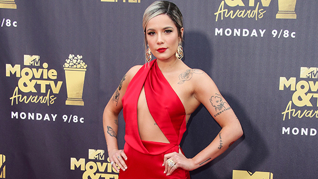 Halsey Pregnant: Singer Debuts Baby Bump In Crochet Bikini Top For Gorgeous Maternity Shoot