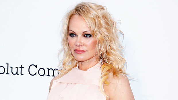 Dan Hayhurst: 5 Things To Know About Pamela Anderson's New Husband