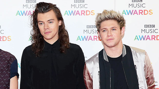 One Direction Fans Lose It After Photos Surface That May Confirm Harry Styles & Niall Horan Reunited.jpg