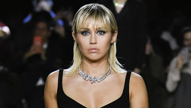 Miley Cyrus Wears Just Black Bikini Bottoms As She Declares 'I Don't Need A Top' — See Pic – HollywoodLife
