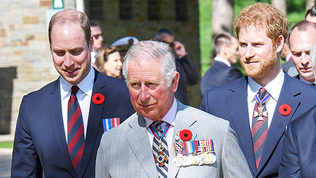 Prince Williams, Prince Charles & Prince Harry