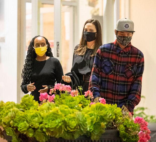 Angelina Jolie, Pax & Zahara