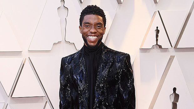 Chadwick Boseman Snubbed At Oscars In Final Film Role & Fans Are Stunned: He Was 'Robbed'