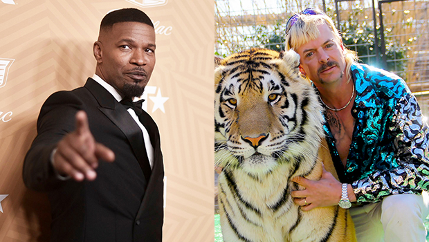 Jamie Foxx Dresses Up Like 'Tiger King's Joe Exotic With Wild Blond Mullet: I'm The 'Panther Prince'.jpg