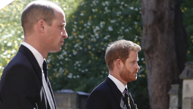 Prince William & Prince Harry Reunite For Grandfather Prince Philip's Funeral Procession — Watch