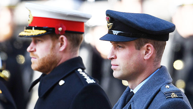 Prince Harry & Prince William Won't Walk Side-By-Side At Prince Philip's Funeral.jpg