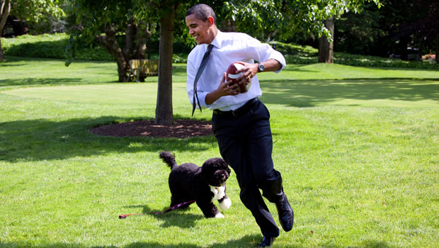 Barack Obama Mourns His Sweet Dog & 'Loyal Companion' Bo: 'We Will Miss Him Dearly' — See Pics.jpg