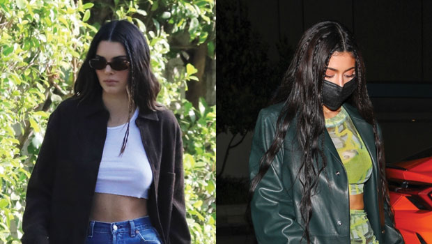 Kylie & Kendall Jenner Show How To Rock Crop Tops For Night Out & Casual Dog Walking — See Pics.jpg