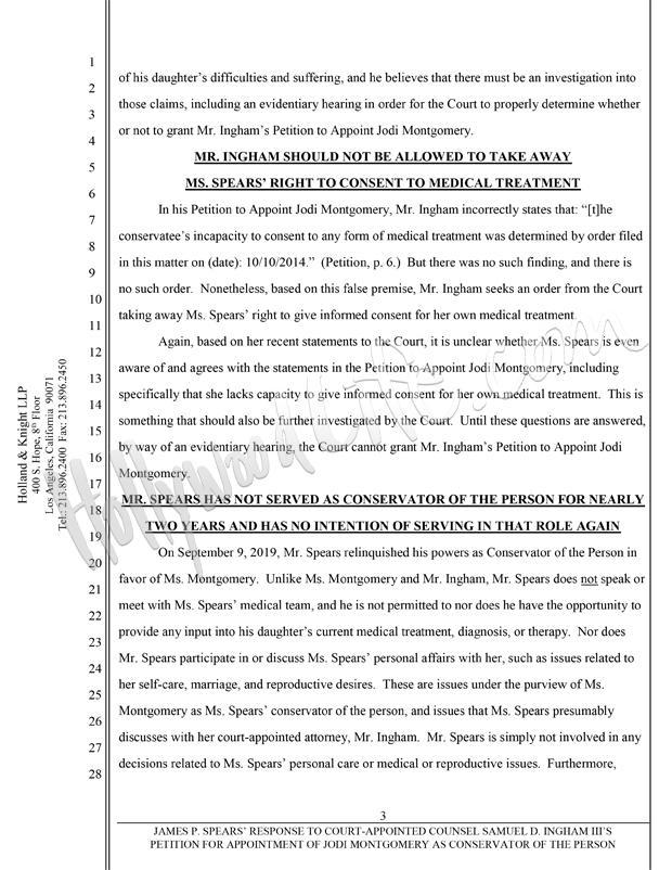 Jamie Spears court docs